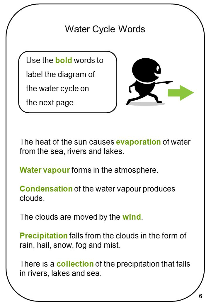 Water Cycle Words Use the bold words to label the diagram of