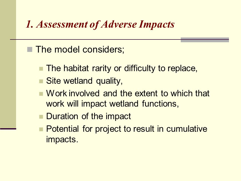 1. Assessment of Adverse Impacts