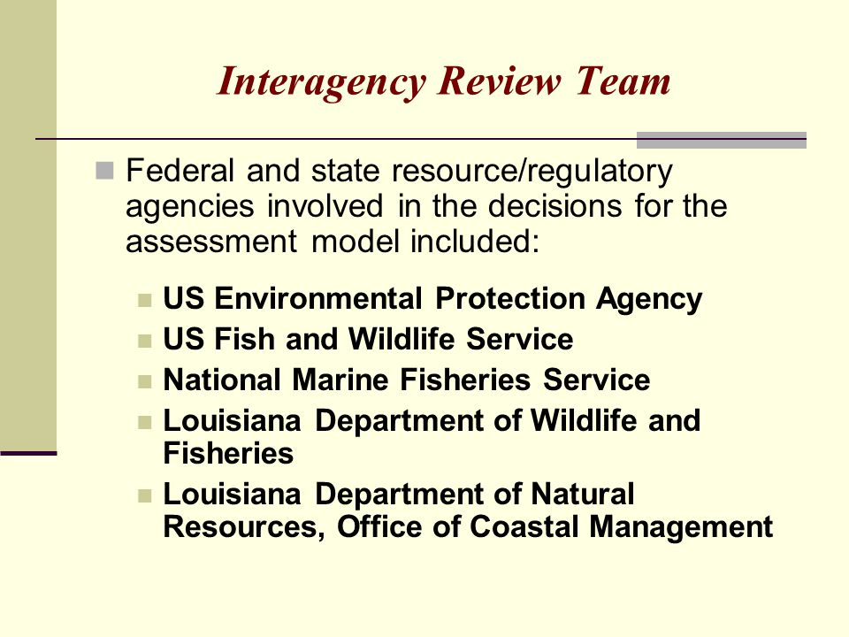 Interagency Review Team