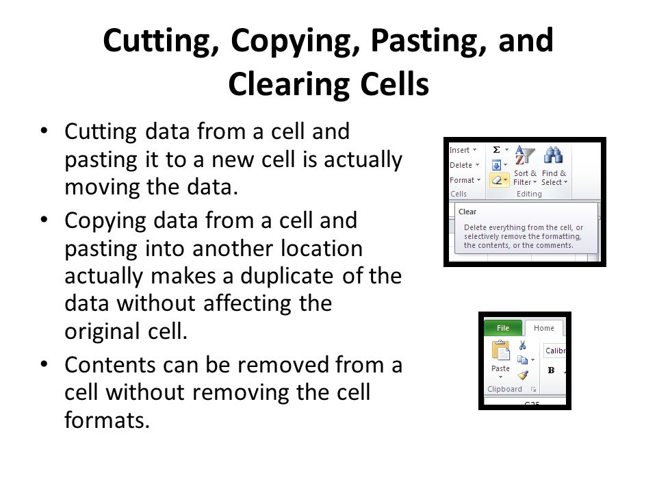 Cutting, Copying, Pasting, and Clearing Cells