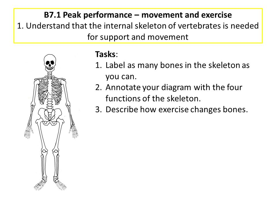 B7. 1 Peak performance – movement and exercise 1
