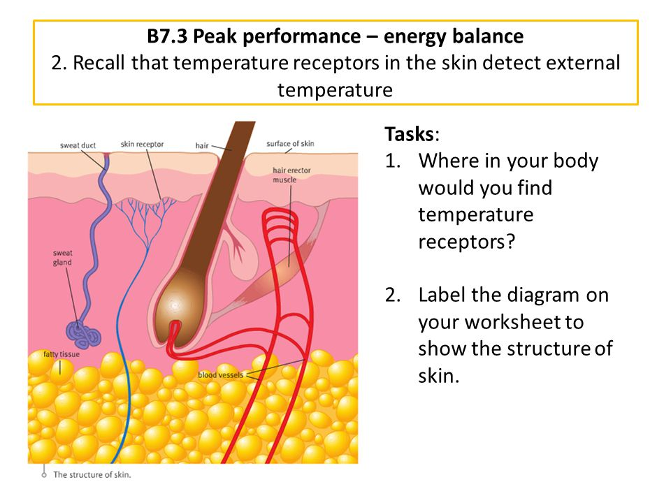 B7. 3 Peak performance – energy balance 2
