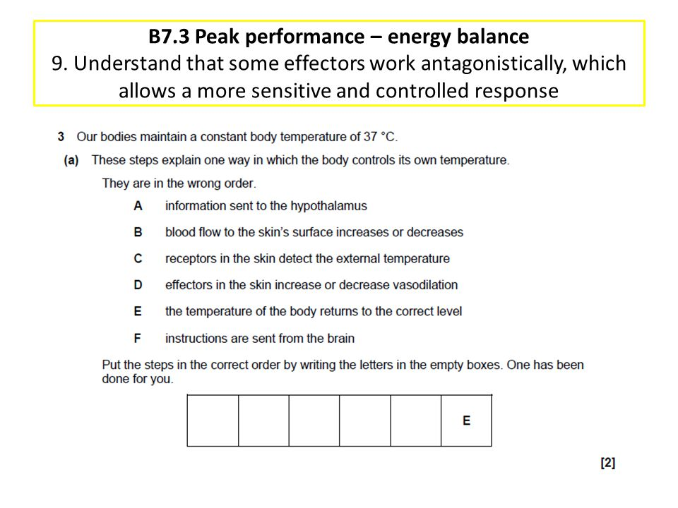 B7. 3 Peak performance – energy balance 9