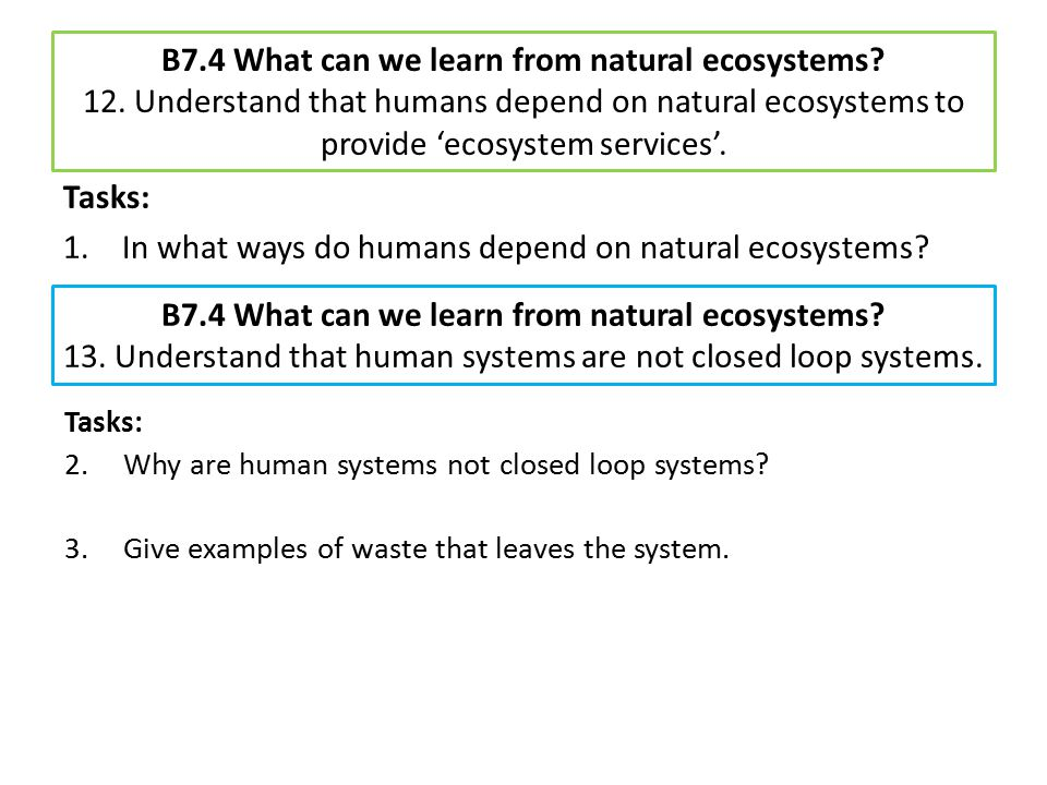 In what ways do humans depend on natural ecosystems