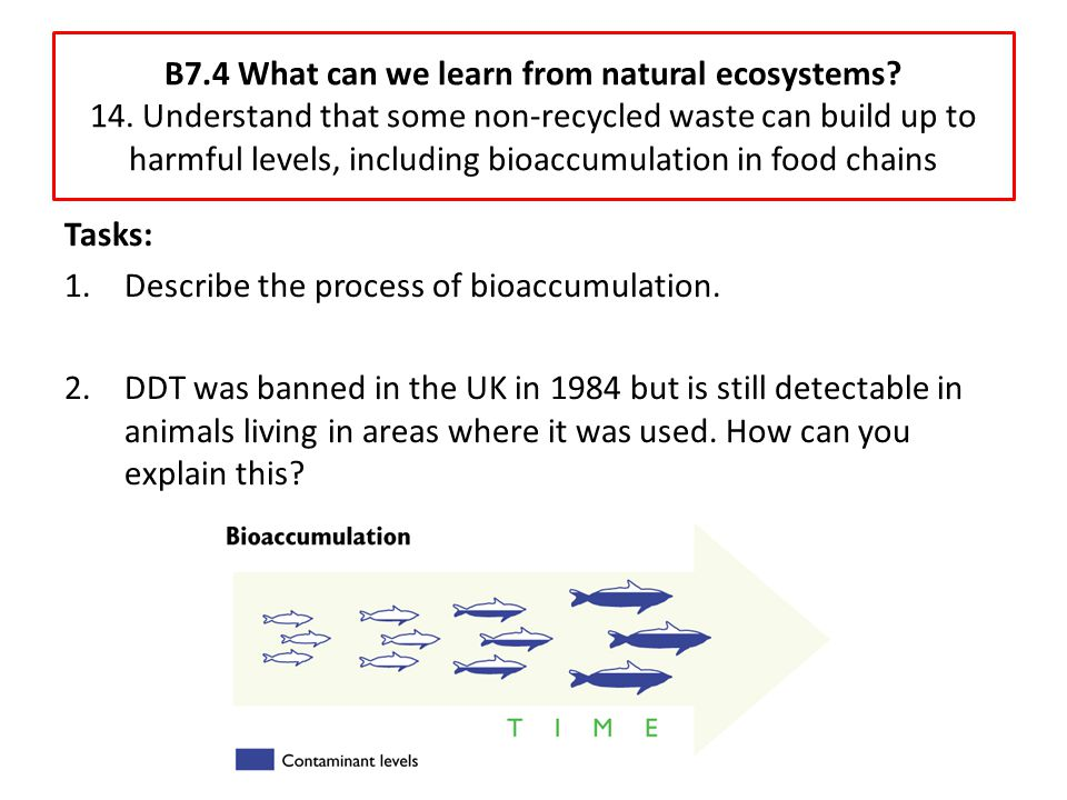 B7. 4 What can we learn from natural ecosystems. 14