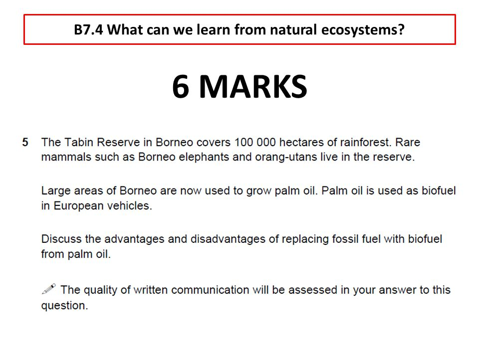 B7.4 What can we learn from natural ecosystems