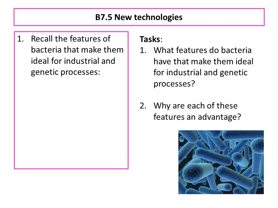 B7.5 New technologies Recall the features of bacteria that make them ideal for industrial and genetic processes: