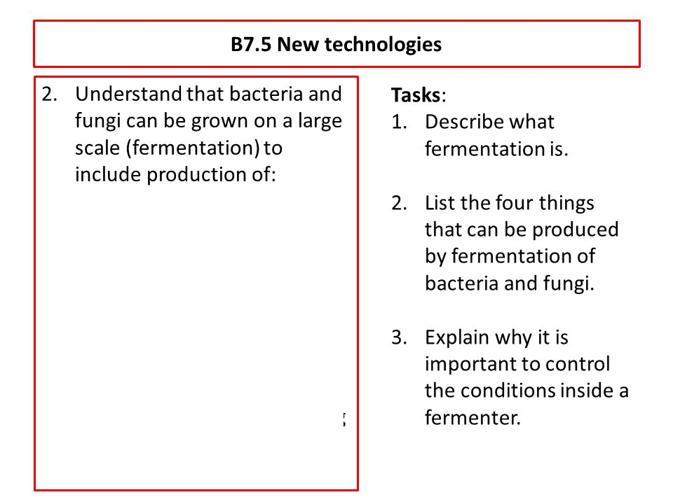 B7.5 New technologies Understand that bacteria and fungi can be grown on a large scale (fermentation) to include production of:
