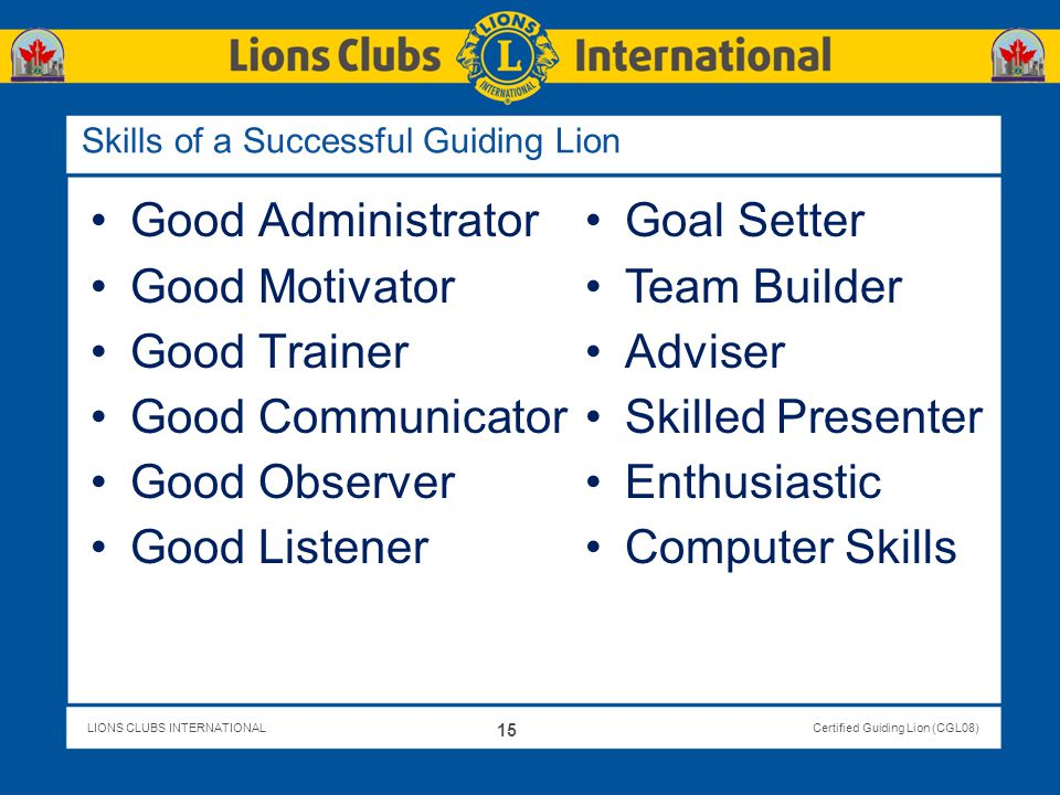 Skills of a Successful Guiding Lion
