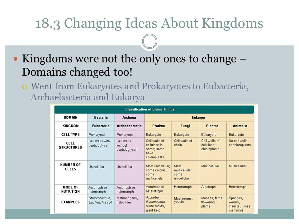 18.3 Changing Ideas About Kingdoms