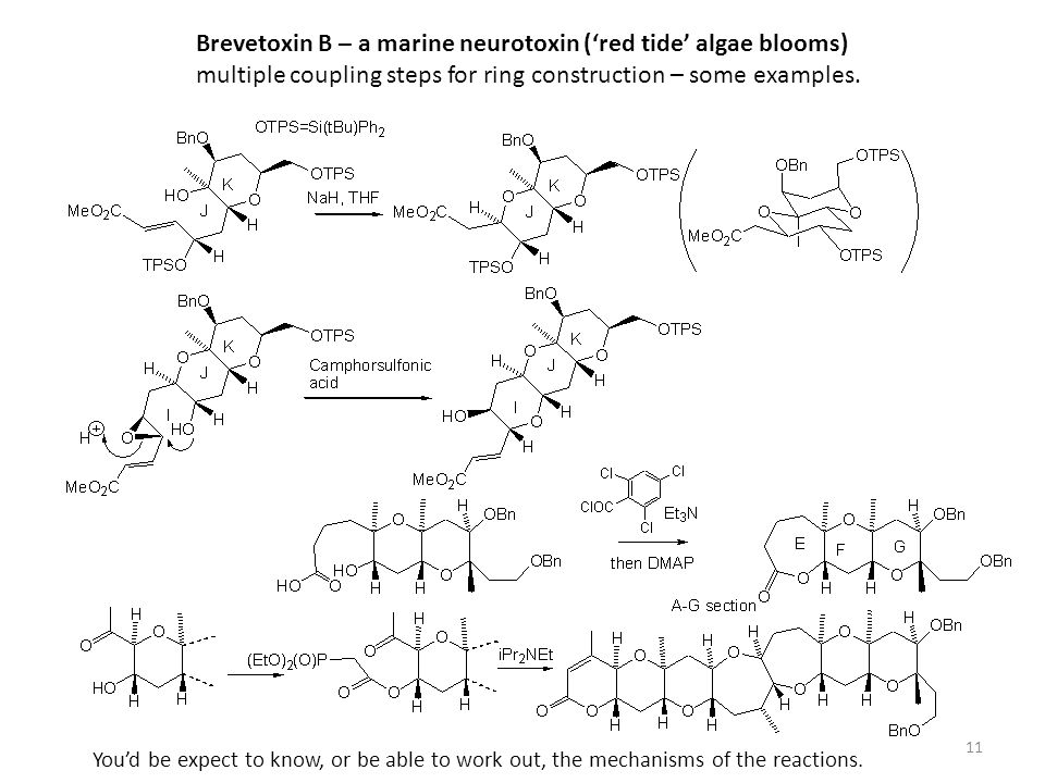 Brevetoxin B – a marine neurotoxin ('red tide' algae blooms)
