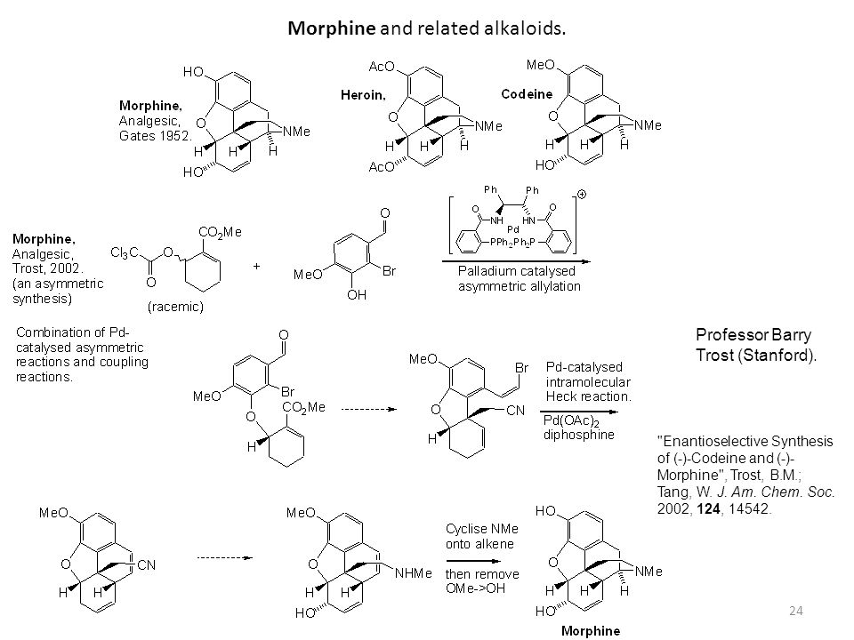 Morphine and related alkaloids.