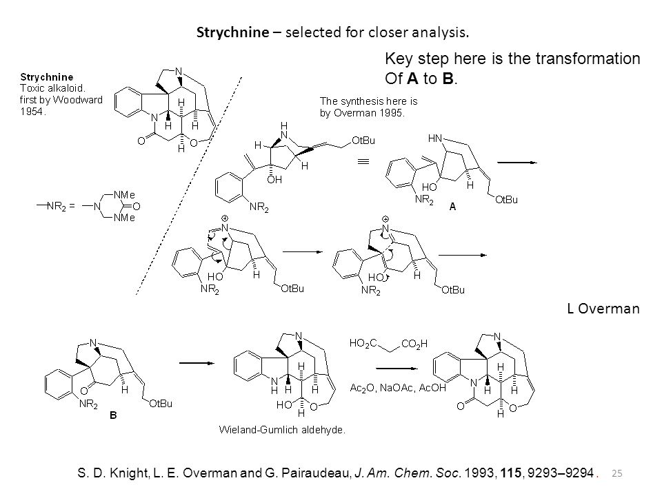 Strychnine – selected for closer analysis.