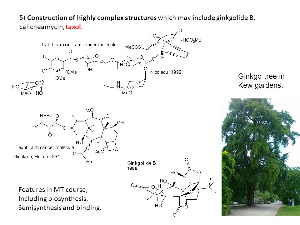 5) Construction of highly complex structures which may include ginkgolide B, calicheamycin, taxol.