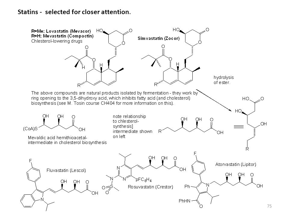 Statins - selected for closer attention.