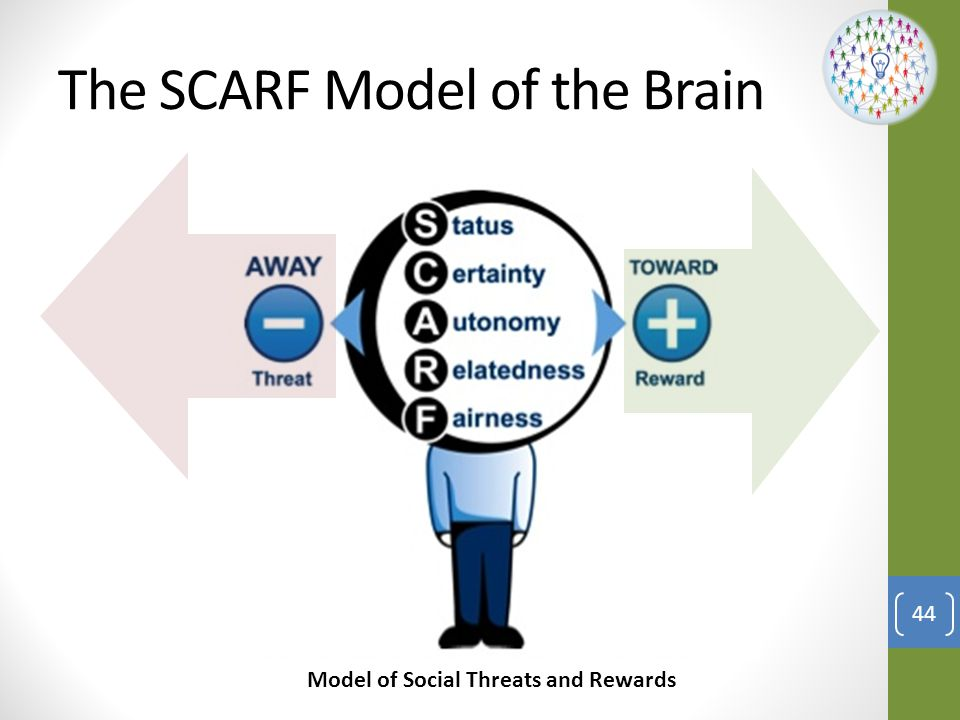 The SCARF Model of the Brain