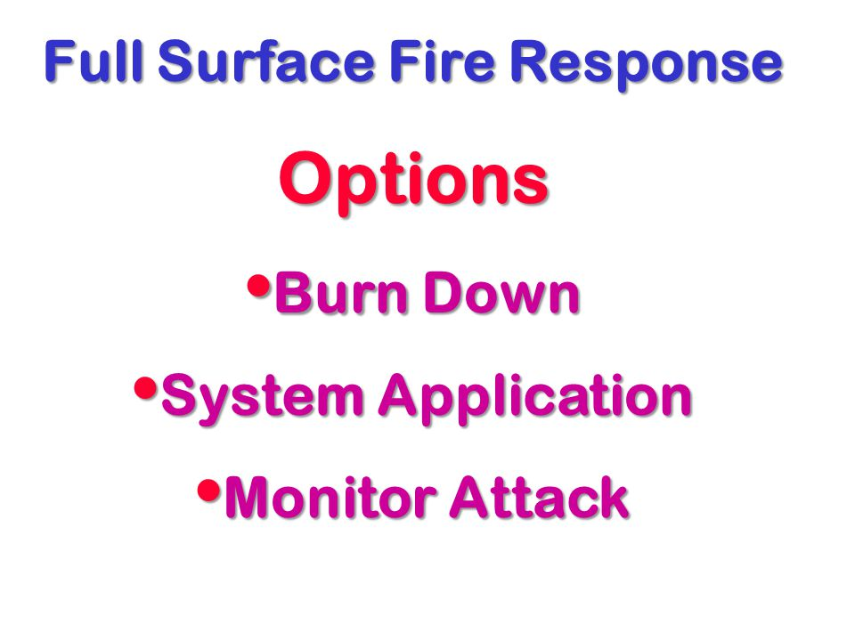 Full Surface Fire Response