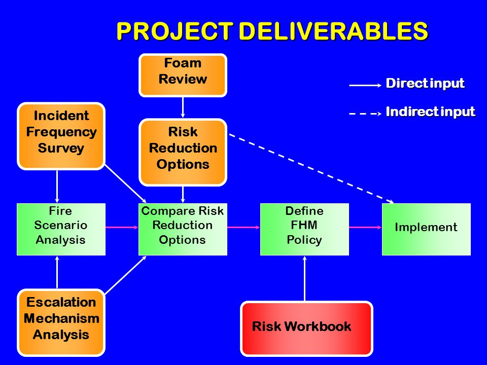 PROJECT DELIVERABLES Risk Reduction Options Foam Review Incident