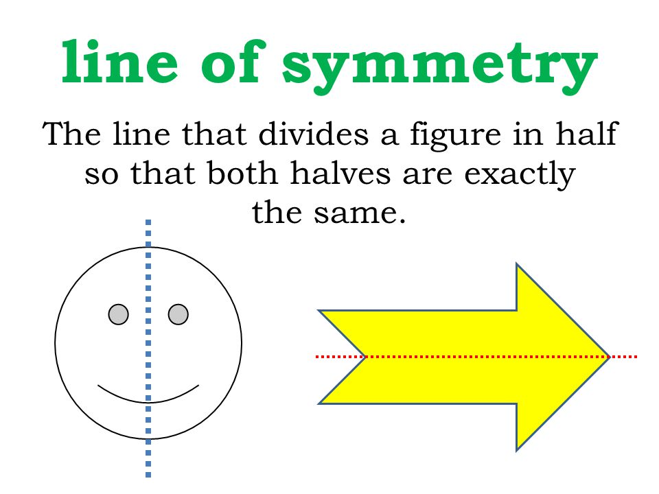line of symmetry The line that divides a figure in half