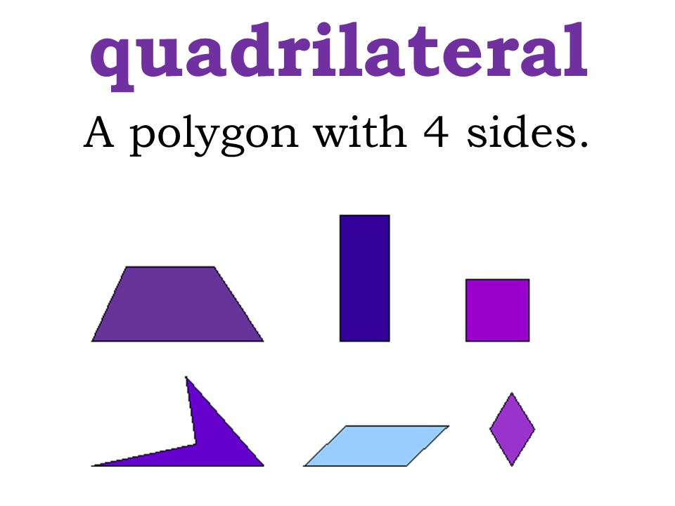 quadrilateral A polygon with 4 sides.
