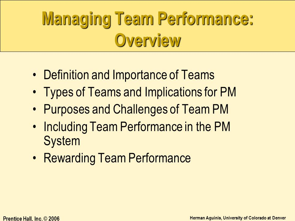 Managing Team Performance: Overview