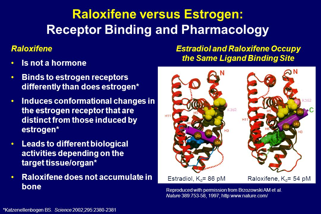 Raloxifene versus Estrogen: Receptor Binding and Pharmacology