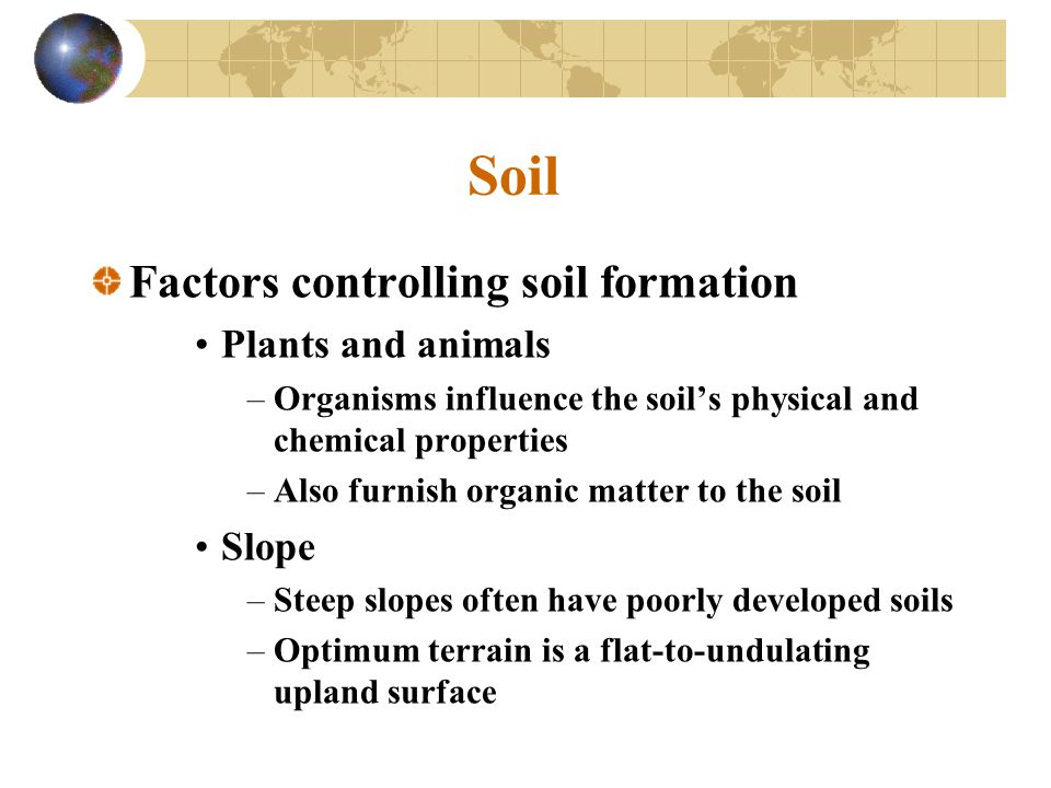 Soil Factors controlling soil formation Plants and animals Slope