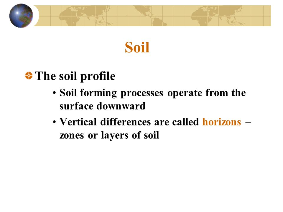 Soil The soil profile. Soil forming processes operate from the surface downward.