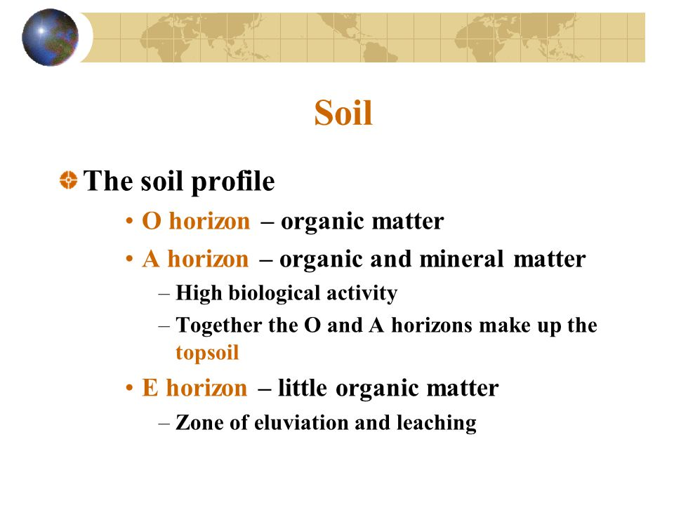 Soil The soil profile O horizon – organic matter