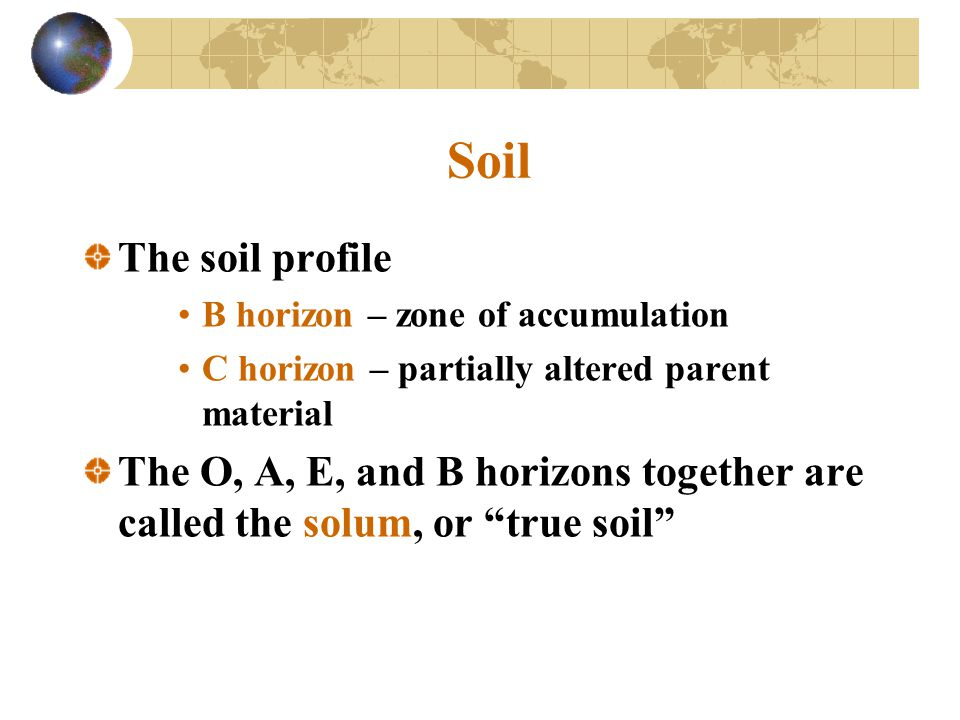 Soil The soil profile. B horizon – zone of accumulation. C horizon – partially altered parent material.
