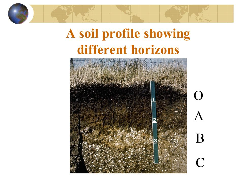 Down and dirty the formation of soils ppt video online for Why are soils different