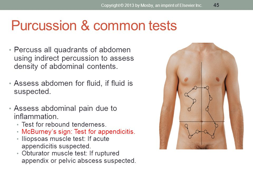 Purcussion & common tests