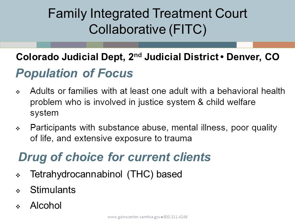 Family Integrated Treatment Court Collaborative (FITC)