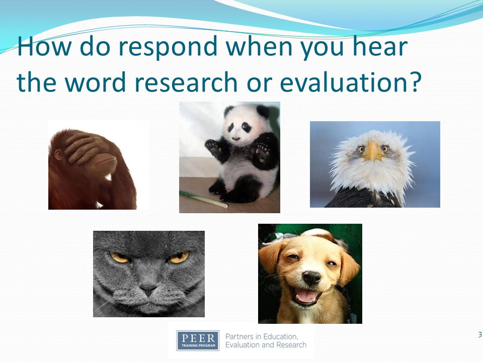 How do respond when you hear the word research or evaluation
