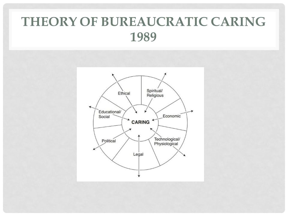 Theory of Bureaucratic Caring 1989