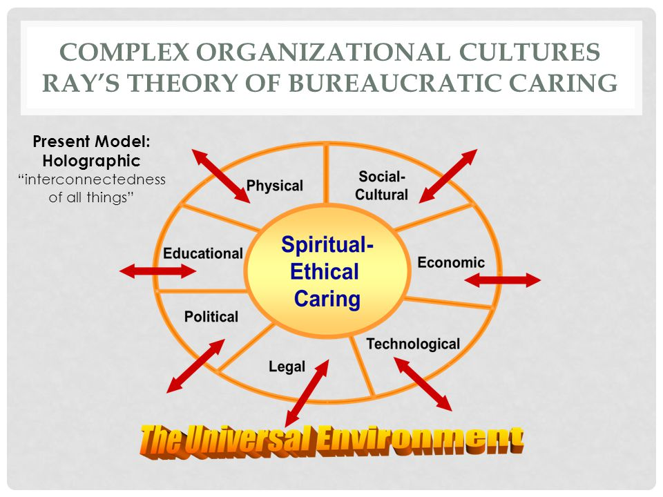 Complex Organizational Cultures Ray's Theory of Bureaucratic Caring