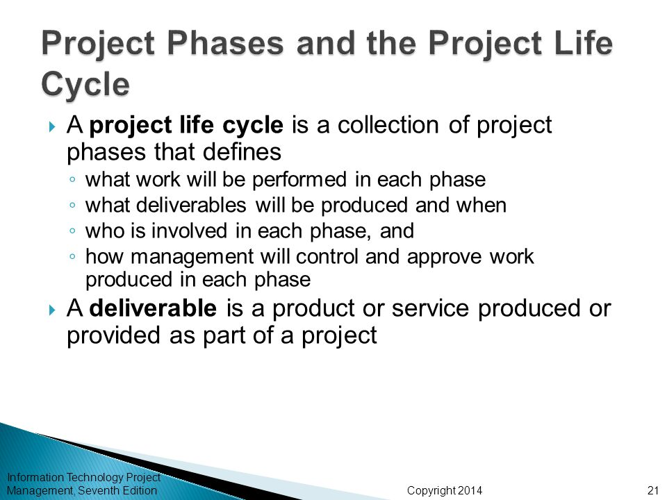 Project Phases and the Project Life Cycle