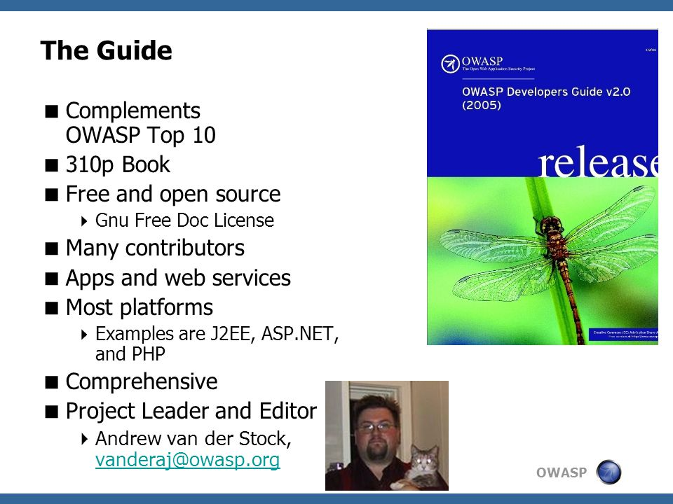 The Guide Complements OWASP Top 10 310p Book Free and open source