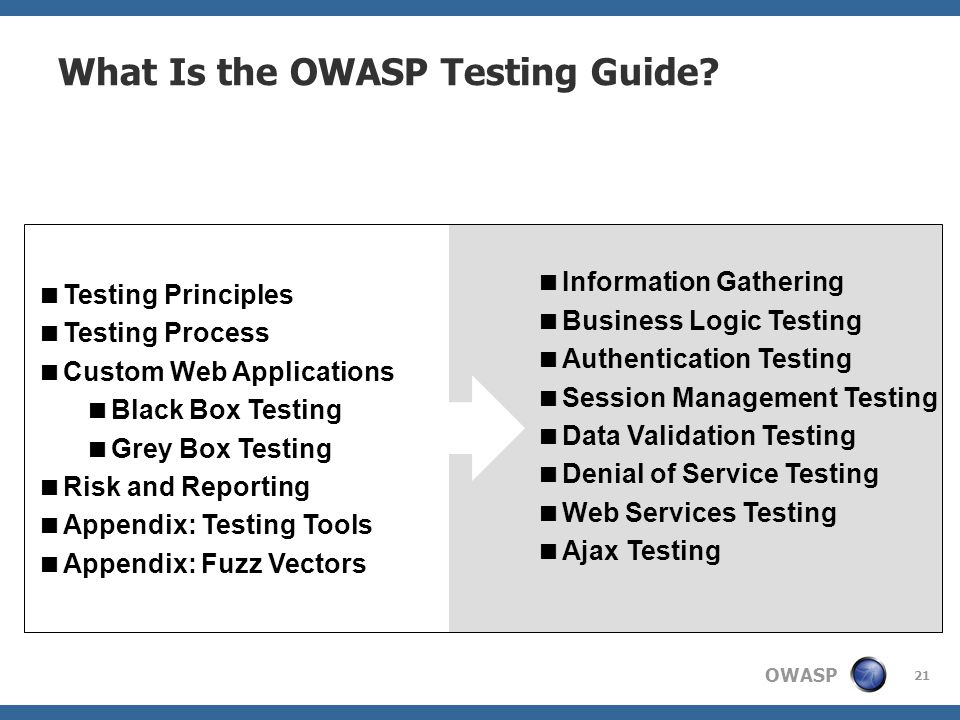 What Is the OWASP Testing Guide