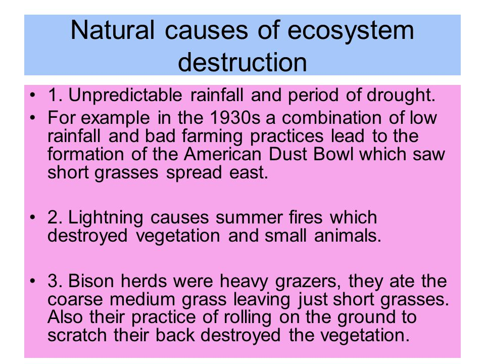 Natural causes of ecosystem destruction