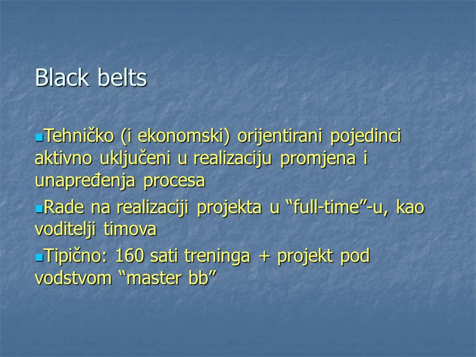 Black belts Tehničko (i ekonomski) orijentirani pojedinci aktivno uključeni u realizaciju promjena i unapređenja procesa.