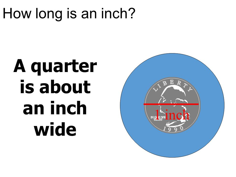A quarter is about an inch wide