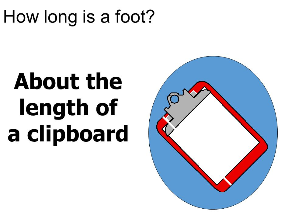 About the length of a clipboard