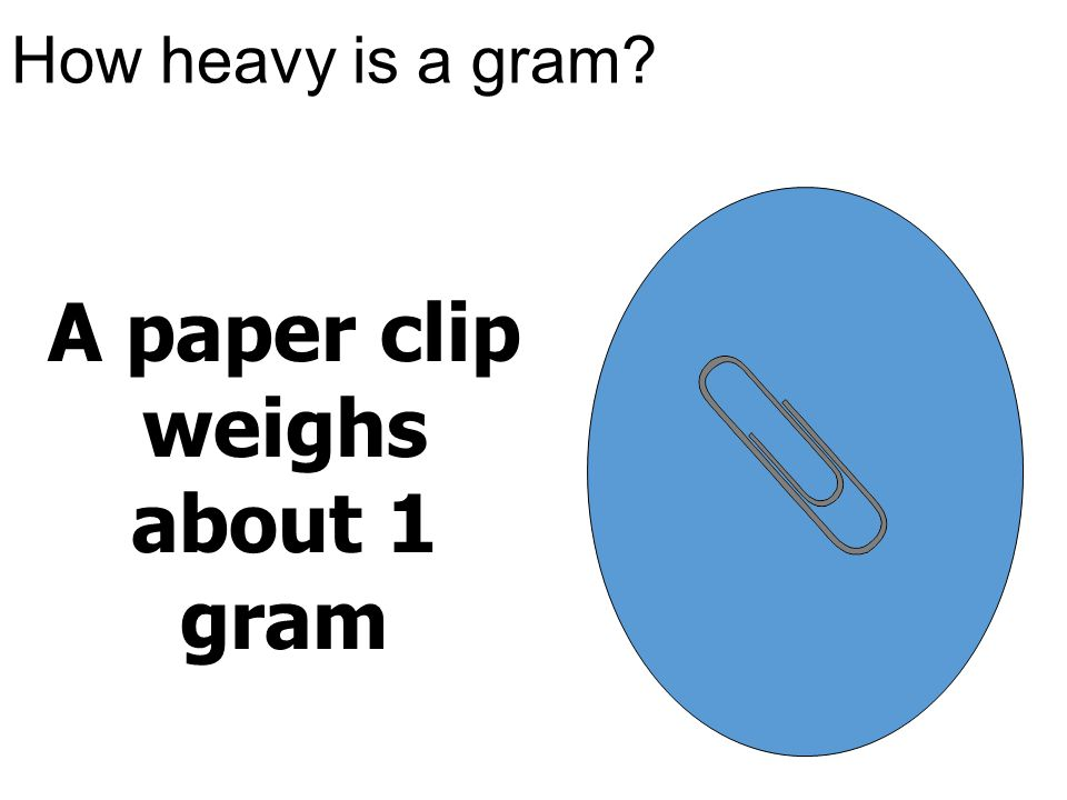 A paper clip weighs about 1 gram