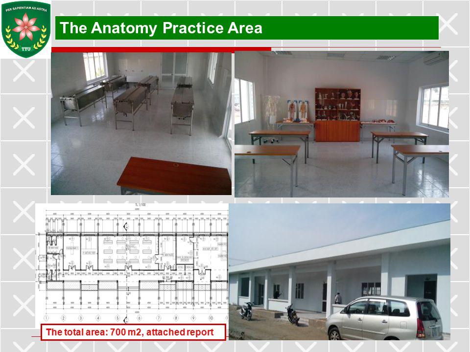 The Anatomy Practice Area