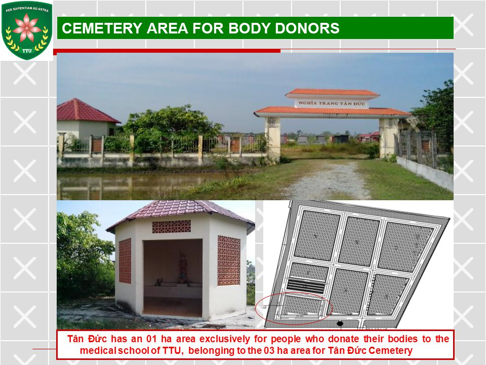 CEMETERY AREA FOR BODY DONORS
