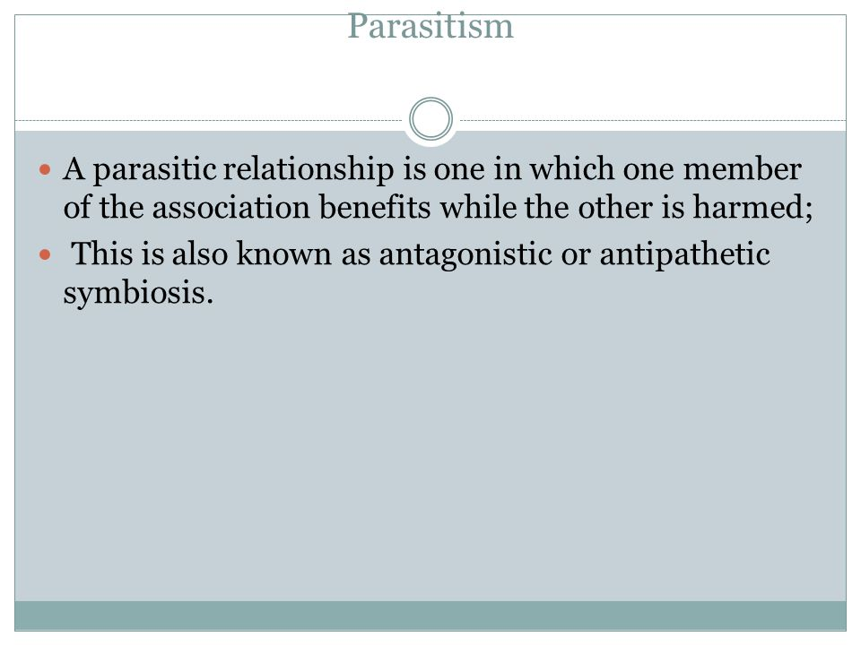 Parasitism A parasitic relationship is one in which one member of the association benefits while the other is harmed;