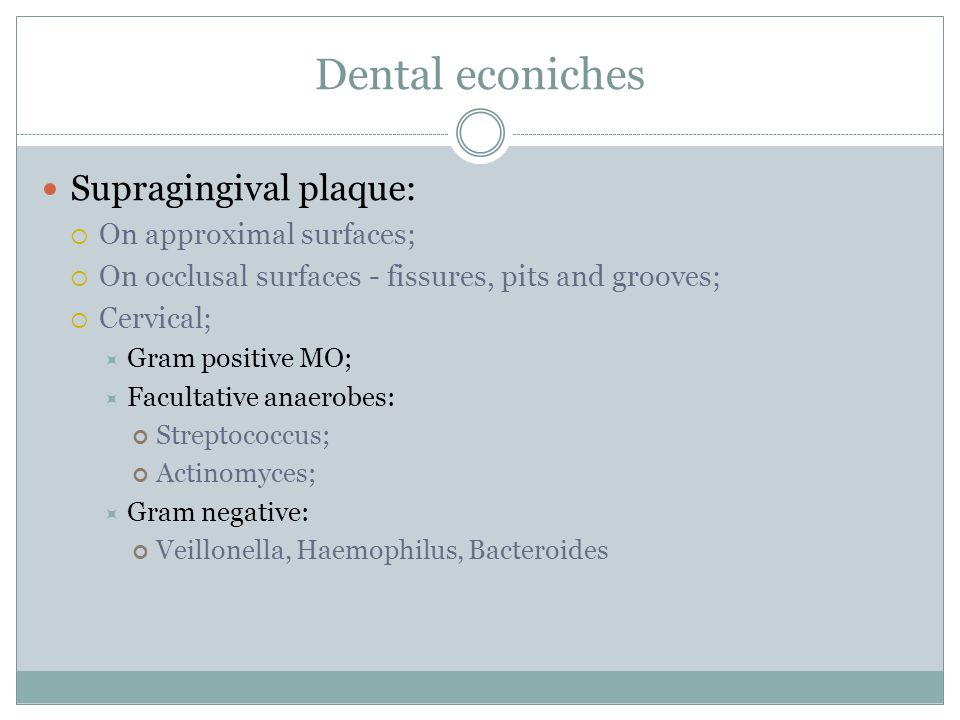 Dental econiches Supragingival plaque: On approximal surfaces;
