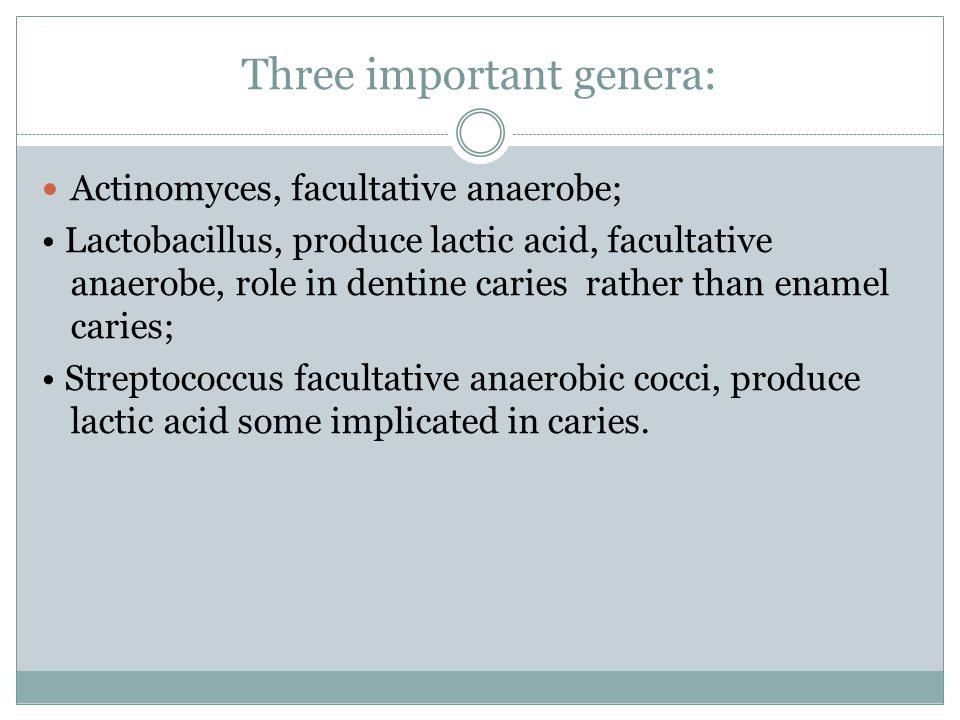 Three important genera: