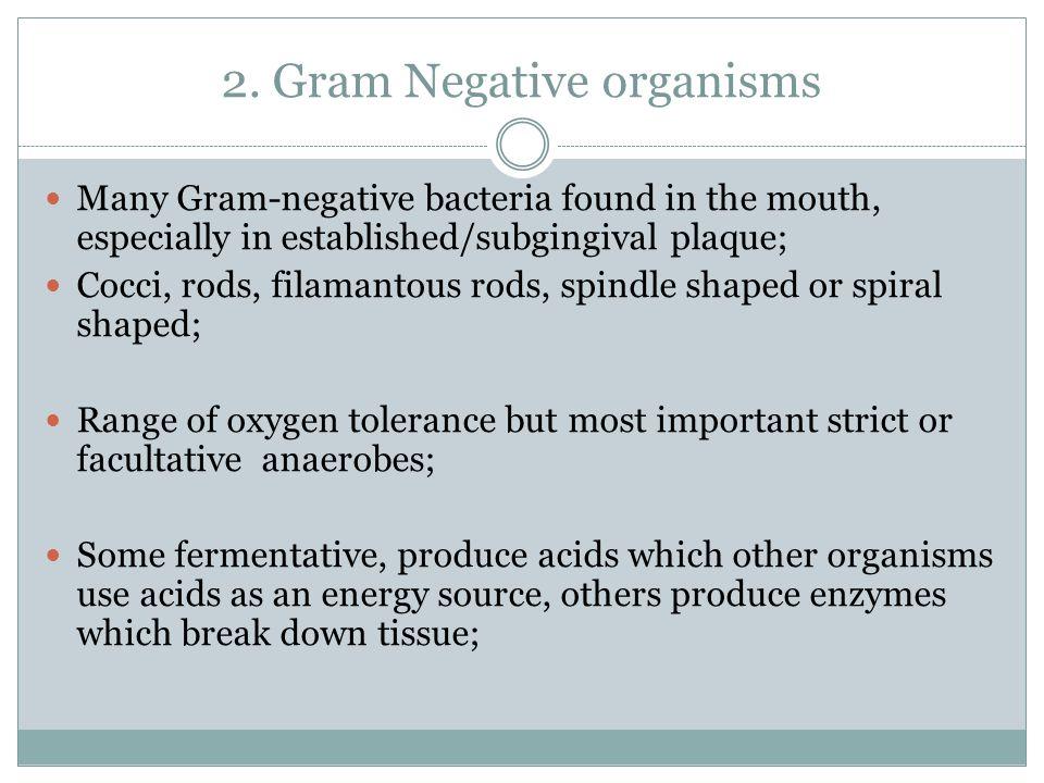 2. Gram Negative organisms